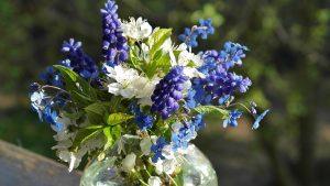 fiorista Romano-di Lombardia